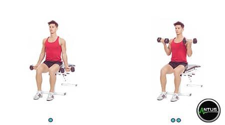 آموزش حرکت جلو بازو