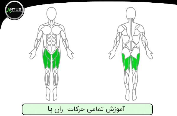 حرکات بدنسازی ران پا